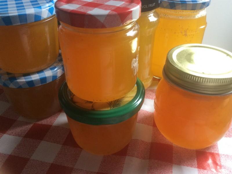 Citroenen sinaasappel gelei…